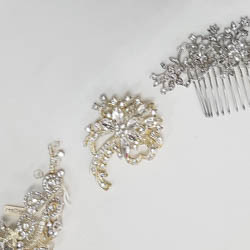 Shop Brooches and Combs