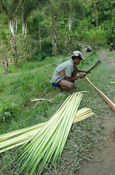Boy processing raffia in Madagascar