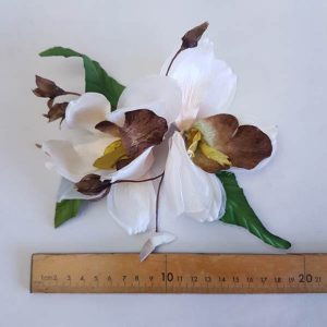 Orchid Double Spray 20cm