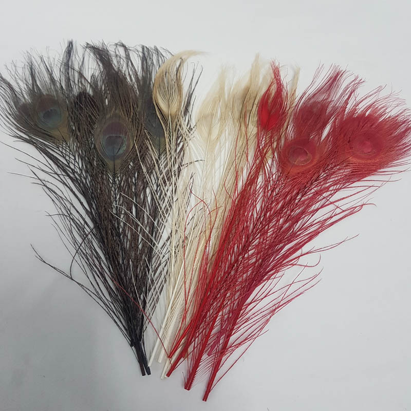 dyed peacock pack of 6